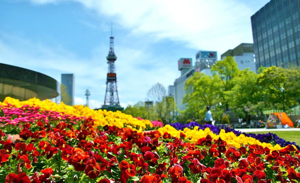 札幌でおすすめの転職サイト7選!おすすめポイントを紹介