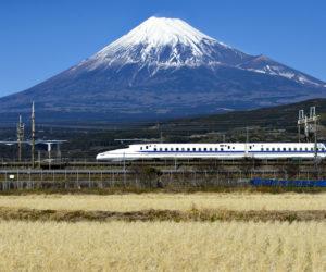 静岡でおすすめの転職サイト7選!おすすめポイントを紹介