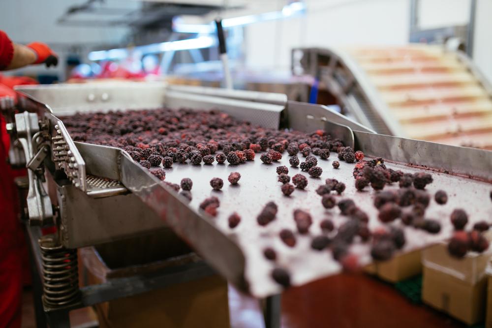 食品業界に転職したい第二新卒が知っておくべきこと